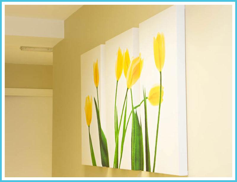 Bellevue Clinic Hallway Art